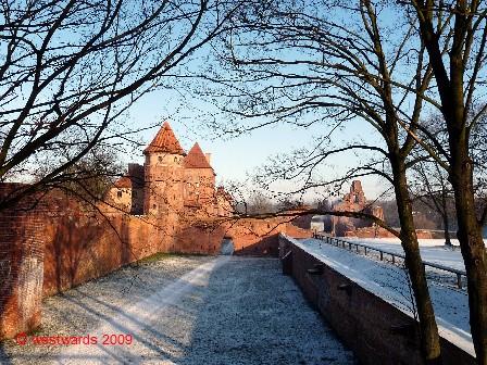 89_Teutonic_Knights_02