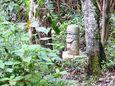 Bosque de las estatuas, San Agustín