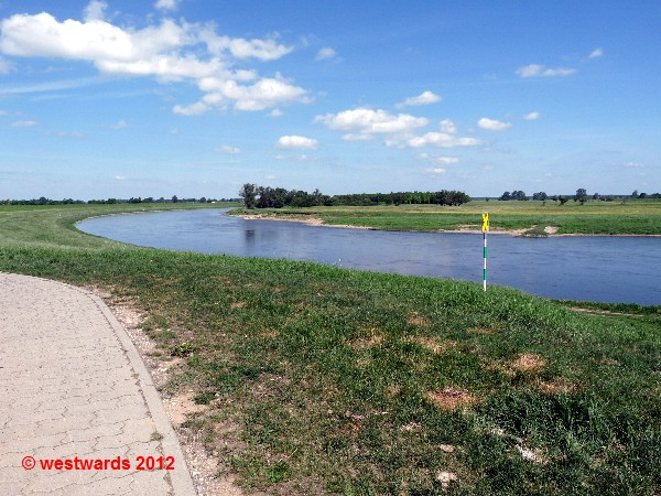 Cycling on the dyke - the Elbe Cycling Route
