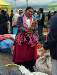 Guinea pig seller on Otavalo's Saturday market