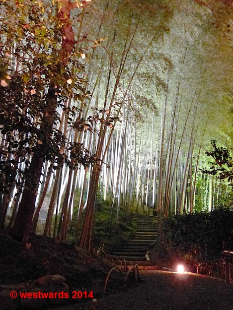 Light-up in the Kodaiji Temple in Kyoto