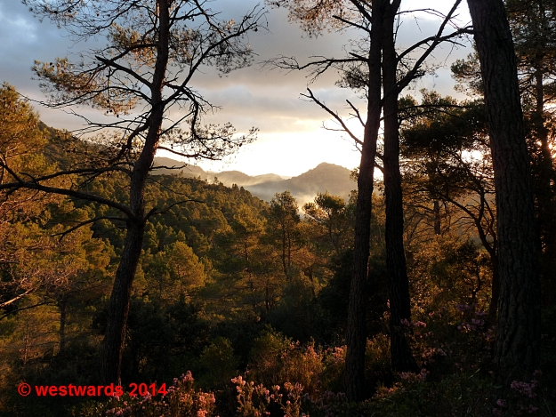 Morning sun in the Tramuntana mountains on Majorca