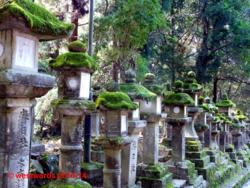 Ancient stone lanterns around Kasuga shrine in Nara