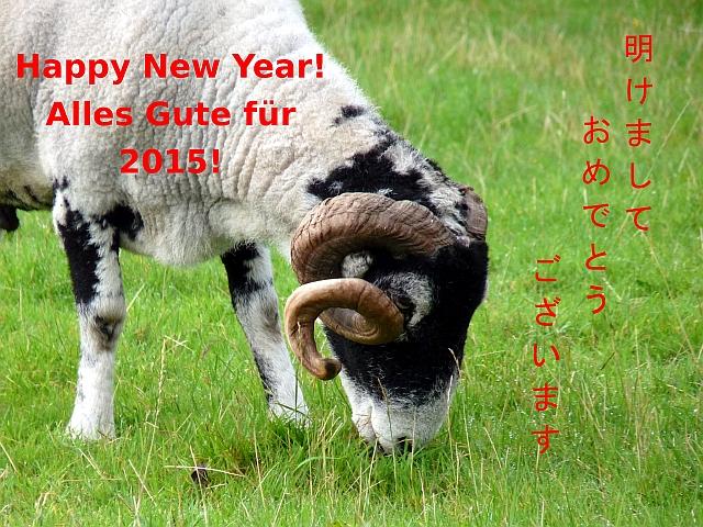 2015Neujahr640