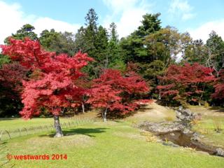Autumn leaves at Motsuji temple in Hiraizumi